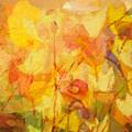 Color Sinfonia by Lutz Baar