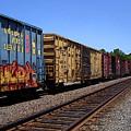 Color Train by Anne Cameron Cutri