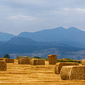 Colorado Agriculture Farming Panorama View Pt 2 by James BO Insogna