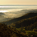 Colorado And Manitou Springs Valley In Fog by Steve Krull