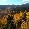 Colorado Autumn - 2 by Alan Pickersgill