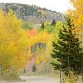 Colorado Colors by Darlene Blaher