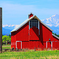 Colorado Country Fine Art Print by James BO Insogna