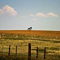 Colorado Crude by Scott Pellegrin