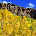 Colorado Fall 3 by Marty Koch