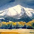 Colorado Fall by Ugljesa Janjic