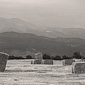 Colorado Farming Panorama View In Black And White by James BO Insogna