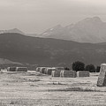 Colorado Farming Panorama View In Black And White Pt 1 by James BO  Insogna