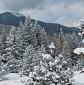 Colorado Foothills Winter Panorama by Cascade Colors