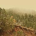 Colorado Mountain Side - Estes Park by Angie Tirado