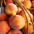 Colorado Peaches In Basket by Teri Virbickis