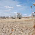 Colorado Plains by Margaret Fortunato