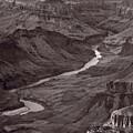 Colorado River At Desert View Grand Canyon by Steve Gadomski