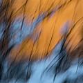 Colorado River Snow Banks by Deborah Hughes