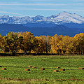 Colorado Rocky Mountain Autumn Hay Harvest Panorama by James BO Insogna
