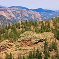 Colorado Rocky Mountains by Sheila Brown