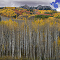 Colorado Splendor by Gary Lengyel