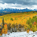 Colorado Valley Of Autumn Color by Teri Virbickis