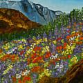 Colorado Wildflowers by Kathy  Symonds