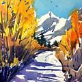 Colorado Winter 1 by Ugljesa Janjic