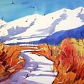 Colorado Winter 2 by Ugljesa Janjic