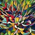 Colorful Abstract Dahlia by Anita Pollak