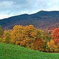 Autumnal Vermont by Carole Gordon
