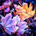 Colorful Autumn by Debra Lynch