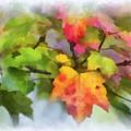 Colorful Autumn Leaves - Digital Watercolor by Kerri Farley