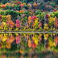 Colorful Autumn Reflections by Christina Rollo