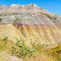 Colorful Badlands Of South Dakota by Debra Martz