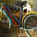 Colorful Bike by David Lee Thompson