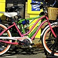 Colorful Bike by Mark Holden