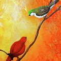 Colorful Bird Art by Nancy Q Studio