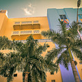 Colorful Building And Palm Trees by Claudia M Photography