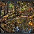 Colorful Canal by Brian  Seidenfrau