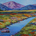Colorful Colorado by Billie Colson