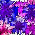 Colorful Cornflowers by Susan Eileen Evans