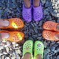Colorful Crocs by Barbara Griffin