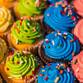 Colorful Cupcake by Pamela Williams