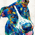 Colorful Dog Art - Happy Go Lucky - By Sharon Cummings by Sharon Cummings