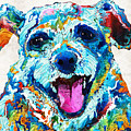 Colorful Dog Art - Smile - By Sharon Cummings by Sharon Cummings