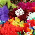 Colorful Easter Feathers by Linda Woods