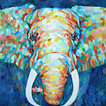 Colorful Elephant by Portraits By NC