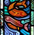 Colorful Fish by Victoria Millard