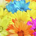 Flower Power by Art Spectrum