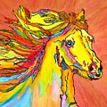 Colorful Horse by Connie Valasco