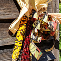 Colorful Indian Corn Decorations by Cynthia Woods