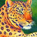 Colorful Leopard Portrait by Rebecca Wang