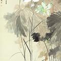 Colorful Lotus by Zhang Daqian